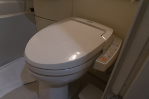 The 21st century toilet